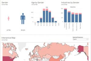 Dashboard - Gender and Wealth (Credits: Lisa Loidl, Alena Klinz, Tamara Kirner, Anastasia Malyavko)